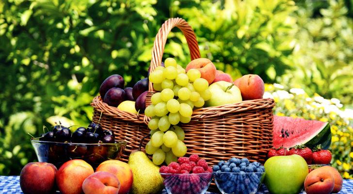 Indian Organic Industry