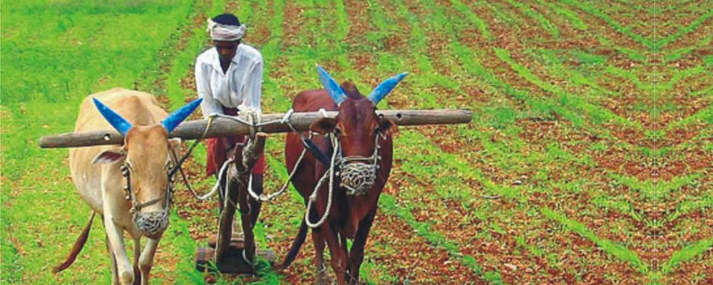 A case for modernization of agriculture in the country