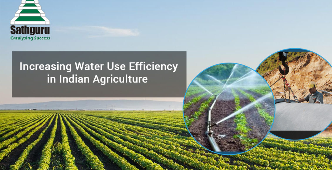 Increasing Water Use Efficiency in Indian Agriculture