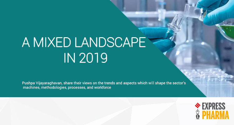 A Mixed Landscape In 2019
