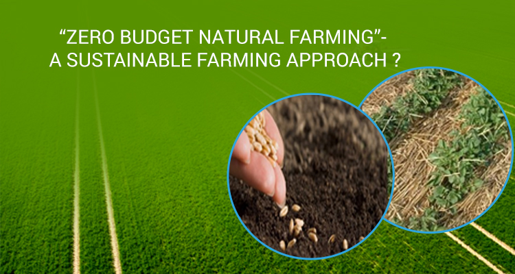 """""""Zero budget natural farming""""- A sustainable farming approach?"""