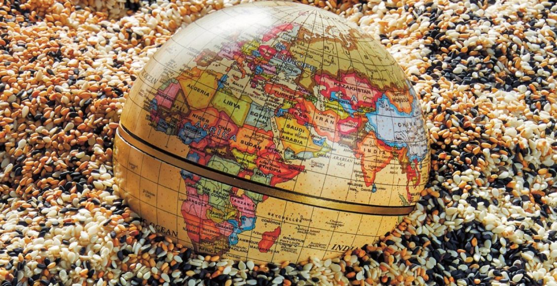 Western and Central African seed market- A lucrative business opportunity