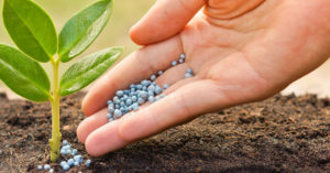 Biopesticides to Play a Critical Role in Pest Management in Future