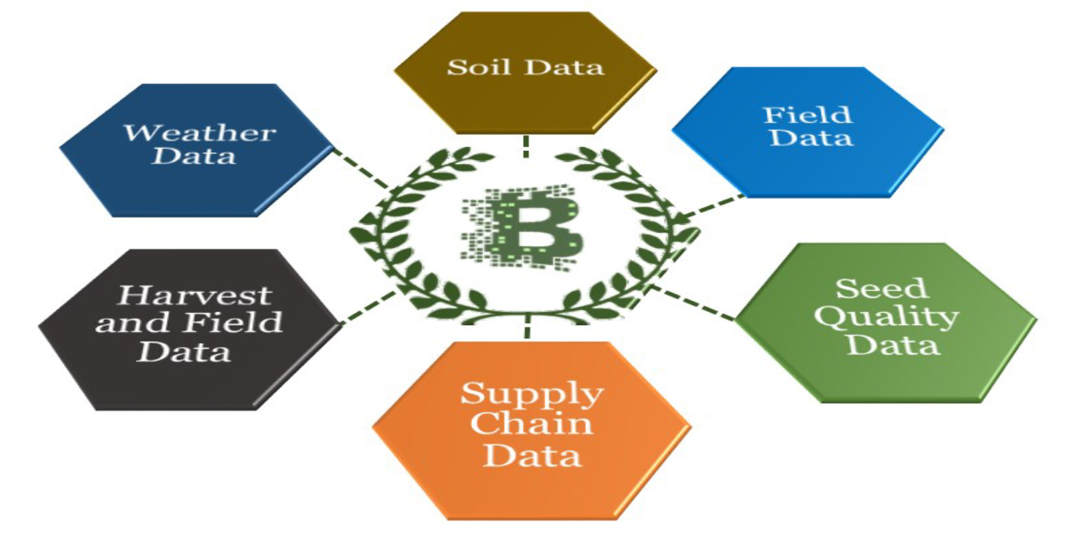 Increased Application of Blockchain Technology in Indian Agriculture Value Chain