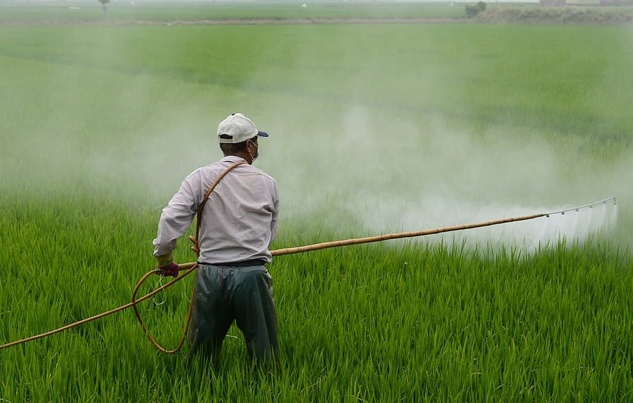 Embracing opportunities towards building a self-sufficiency in the agrochemical industry
