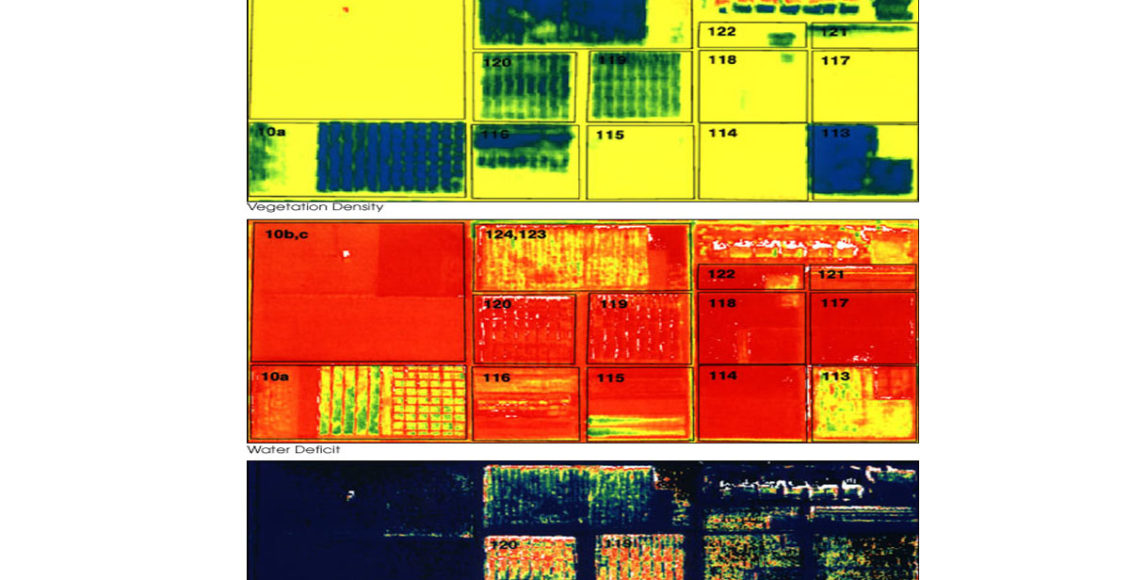 Remote Sensing, a promising Agtech tool