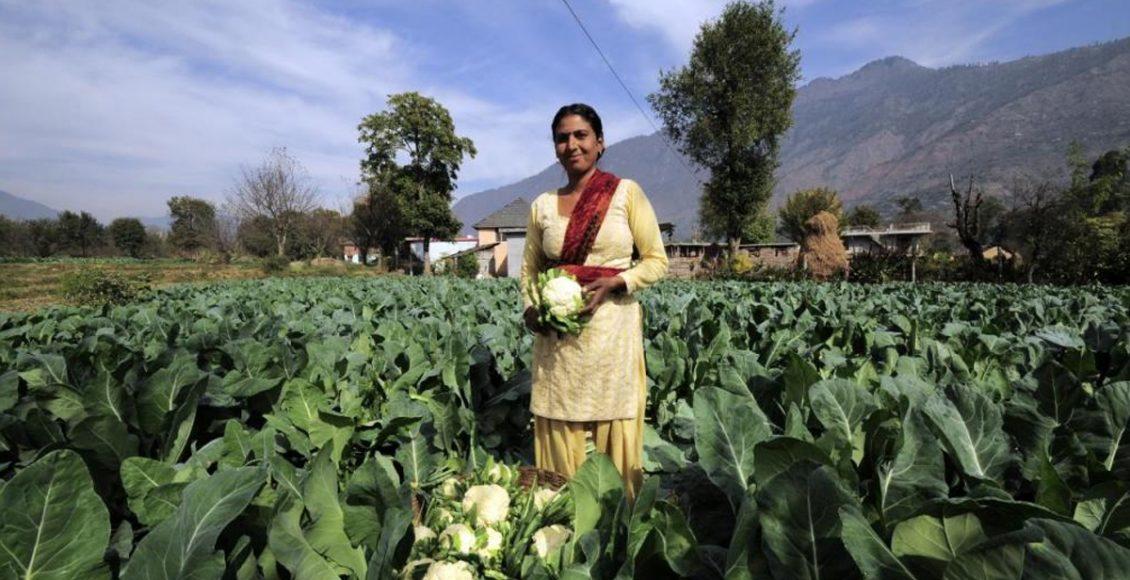 Farm Bills 2020 – A boon or bane for Indian farmers?