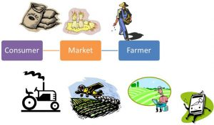 Rebooting agricultural supply chains – how the MP model can benefit every state