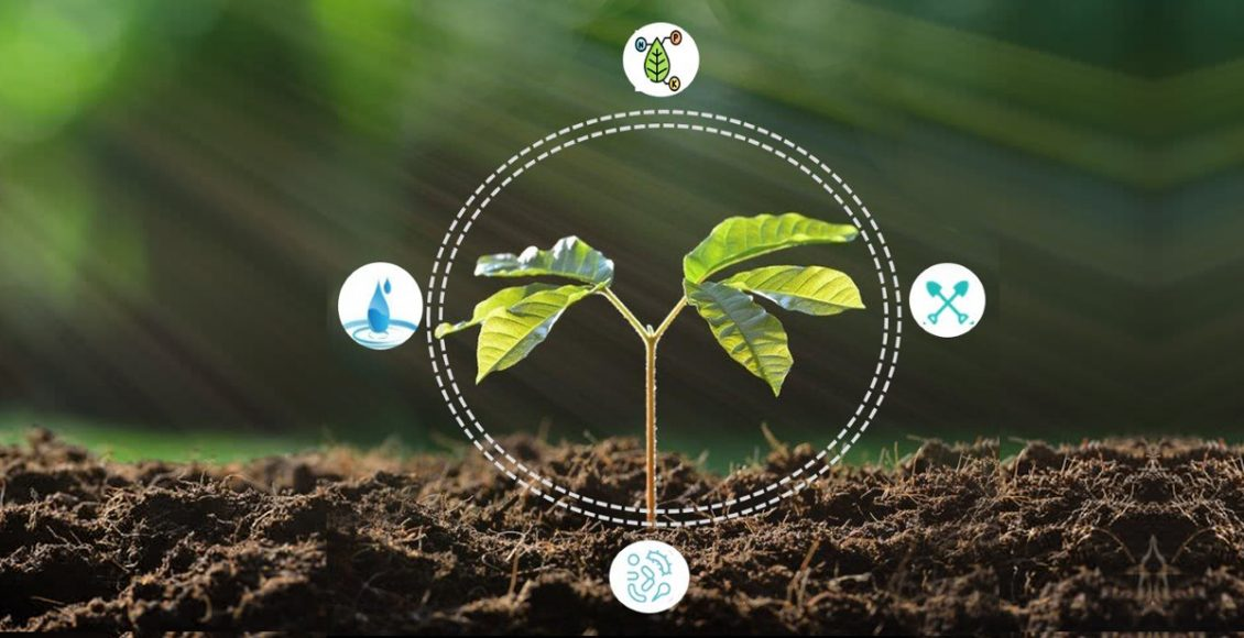 Ag biologicals: A surging business opportunity