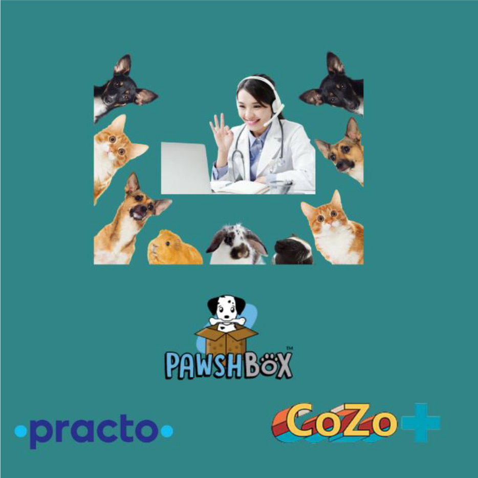 Emergence of Teleconsultation in Pet Industry