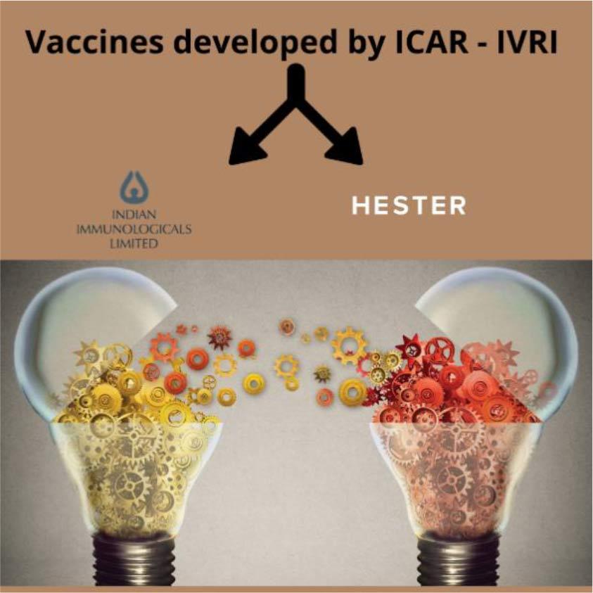 indigenous vaccines