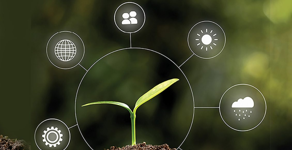 Accelerating Breeding Programs using Crop Simulation Models