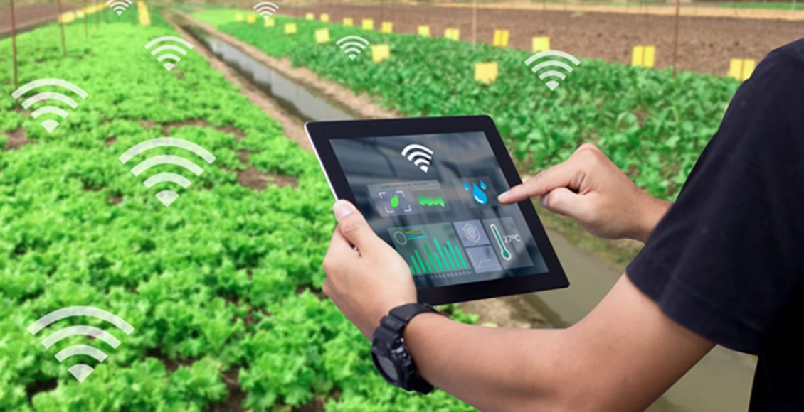 Technology led Transformation for Augmenting Post-Harvest Supply Chains