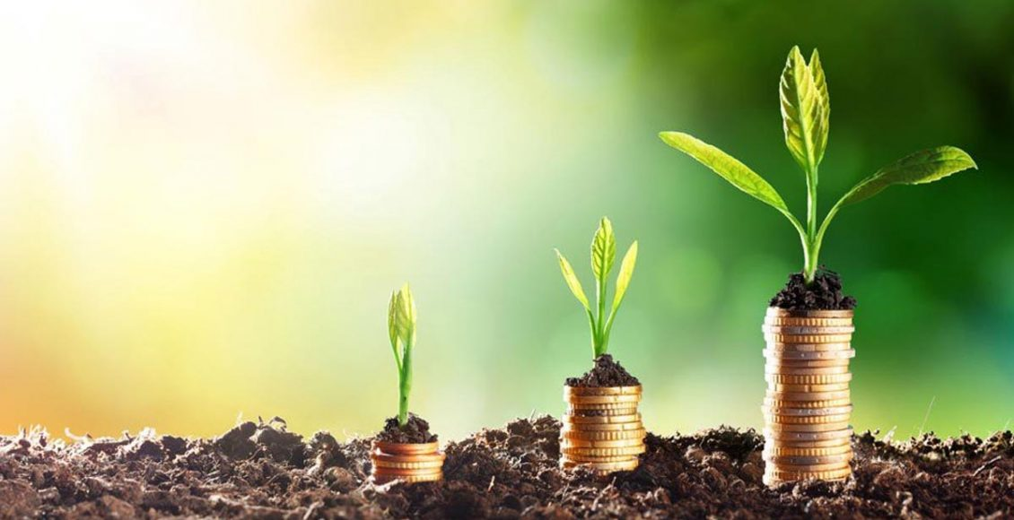 Trends in private capital flow in Indian agribusinesses